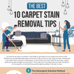 10-carpet-stain-removal-tips-infographic-plaza