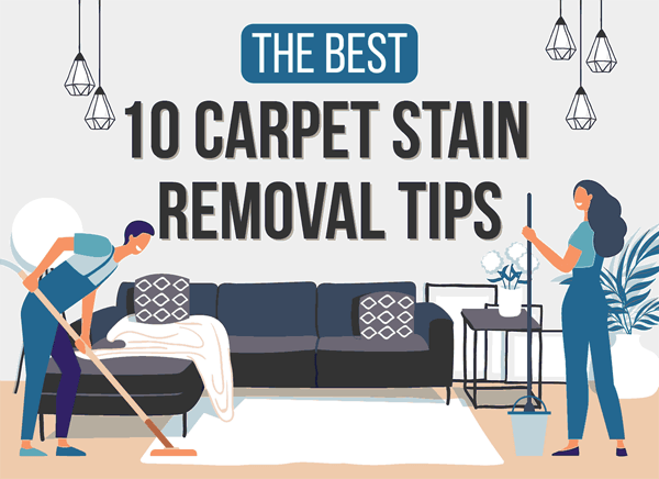 10-carpet-stain-removal-tips-infographic-plaza-thumb
