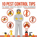 10-pest-control-tips-infographic-plaza