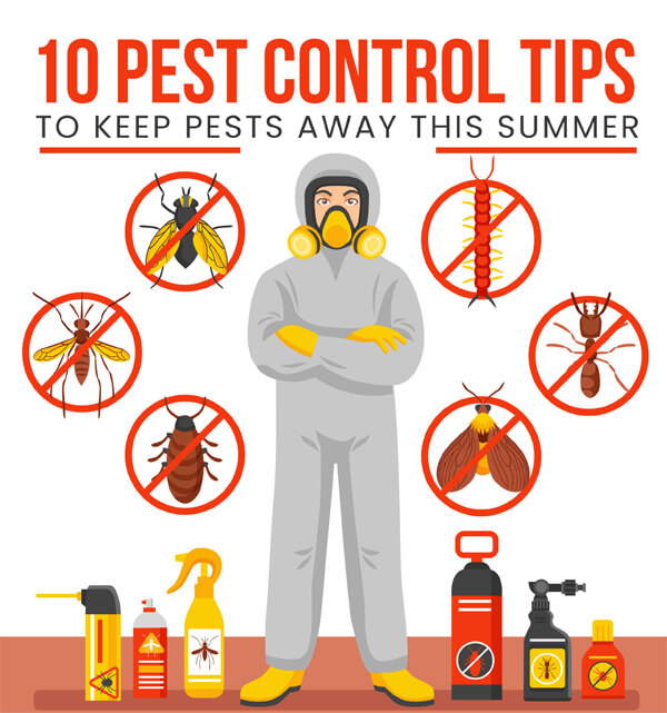 10-pest-control-tips-infographic-plaza-thumb