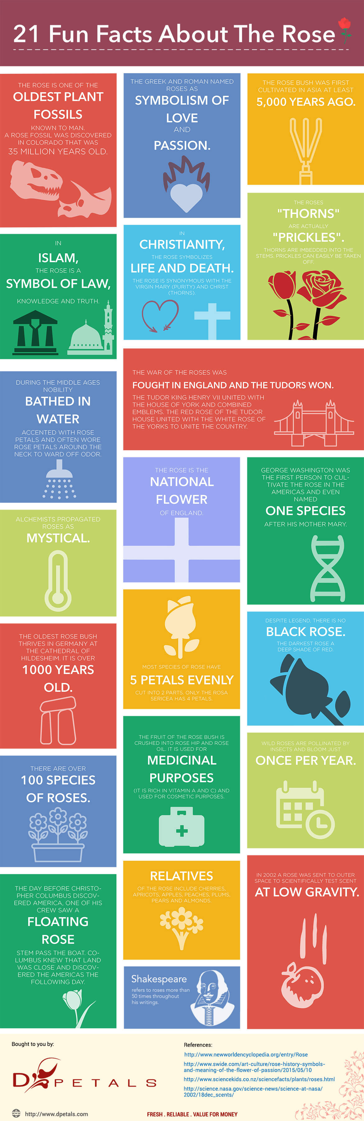 21-fun-facts-rose-infographic