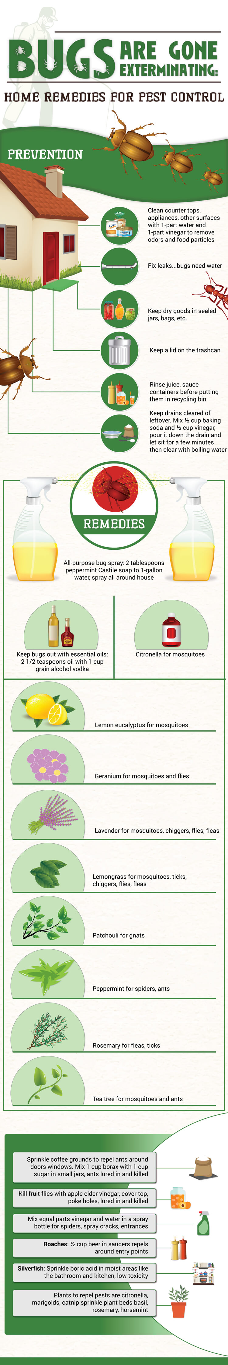 23-Do-It-Yourself-Pest-Control-Tips-Infographic-plaza