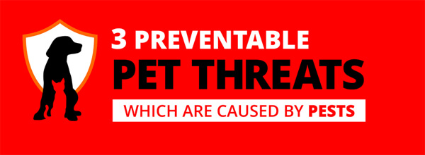 3-preventable-pest-threats-infographic-thumb