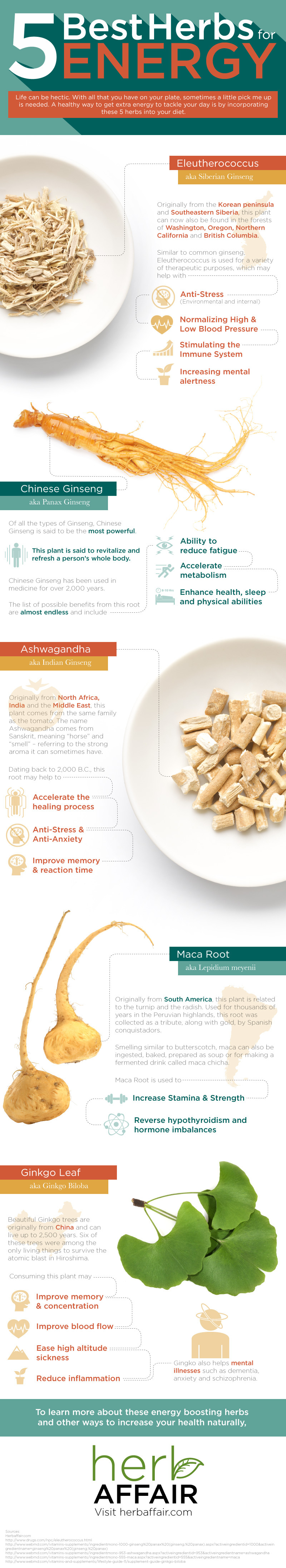 5-herbs-for-energy-infographic-plaza