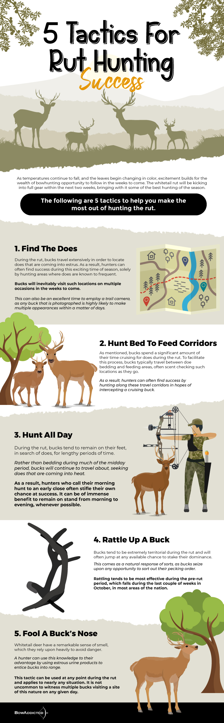 5-tactics-for-rut-hunting-success-infographic-plaza