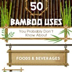 50-Bamboo-Uses-Infographic-plaza