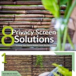 8-Privacy-Screen-Solutions-to-Keep-Your-Home-Hidden-from-Thy-Neighbour-infographic-plaza