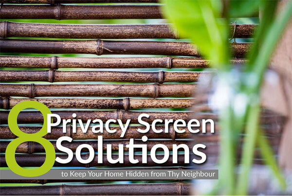 8-Privacy-Screen-Solutions-to-Keep-Your-Home-Hidden-from-Thy-Neighbour-infographic-plaza-thumb