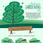 Autumn-Gardening-Jobs-infographic-plaza