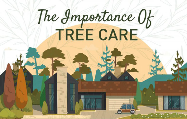 Benefits of Caring for Trees-infographic-plaza-thumb