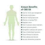 Benefits_of_CBD_Oil-infographic-plaza