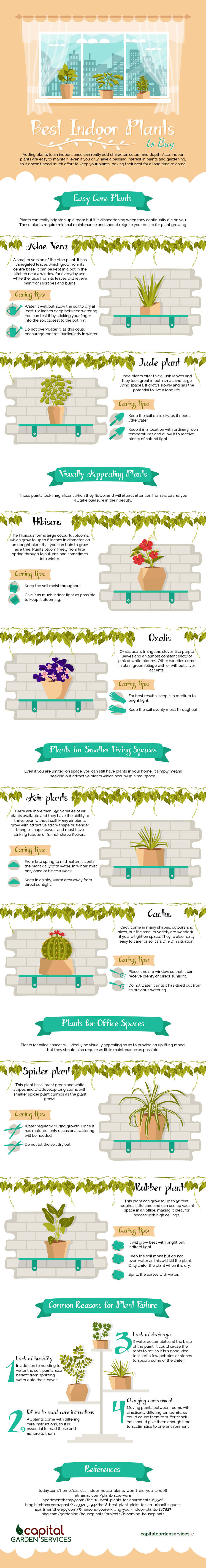 Best-Indoor-Plants-Infographic-plaza