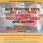 Best Sensory Toys for Kids with Sensory Processing Issues and Autism-infographic-plaza