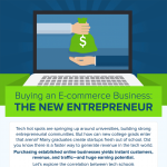 Buy-an-Online-Business-infographic-plaza