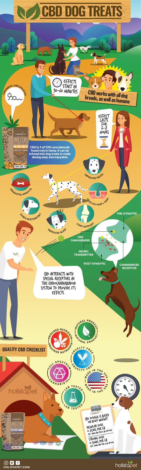 CBD-Dog-Treats-Infographic-plaza