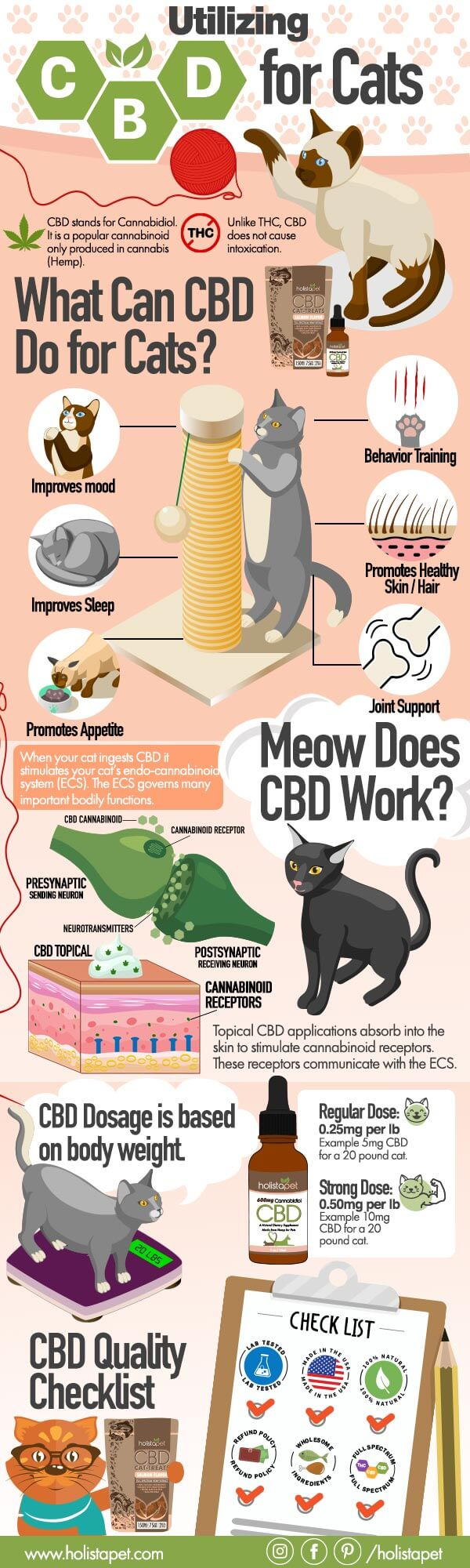 CBD-for-cats-infographic-plaza