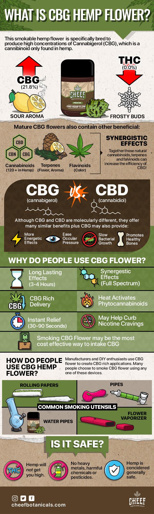 CBG-hemp-flower-infographic-plaza