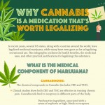 Cannabis-medication-worth-legalizing-infographic-plaza