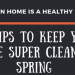 DIY-Tips-to-Keep-Your-Home-Super-Clean-in-Spring-infographic-plaza-thumb