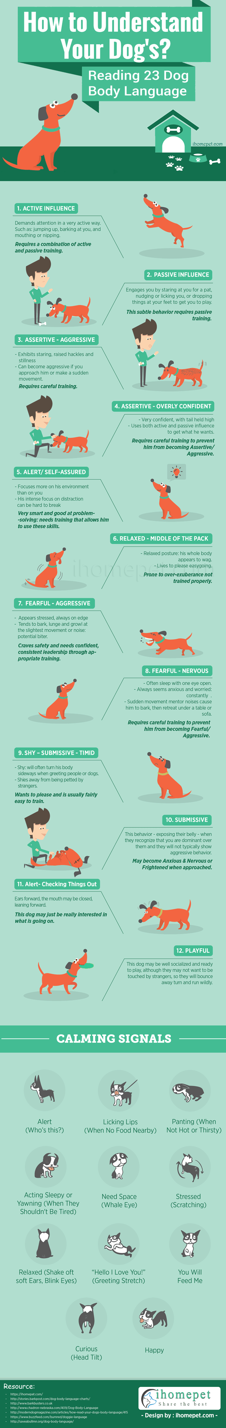Help You Read Your Dog's Body Language - Reading 23 Dog Body Languages