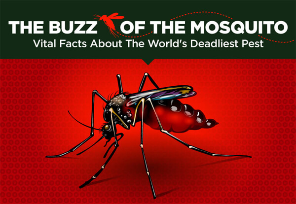 Elevate_Buzz-off-the-Mosquito-infographic-plaza-thumb