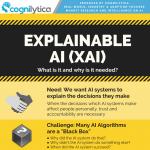 Explainable-AI-XAI-infographic-plaza