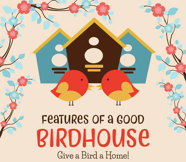 Features-of-a-Good-Birdhouse–Give-a-Bird-a-Home-infographic-plaza-thumb