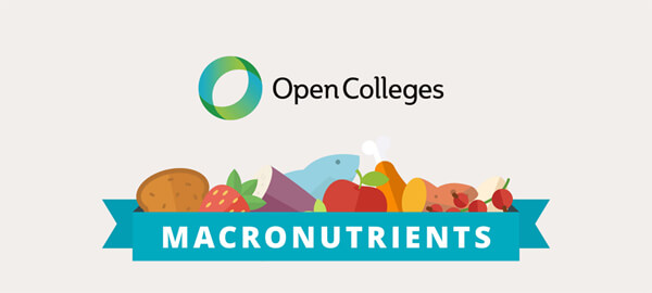 How-To-Eat-The-Right-Ratio-Of-Macronutrients-infographic-plaza-thumb