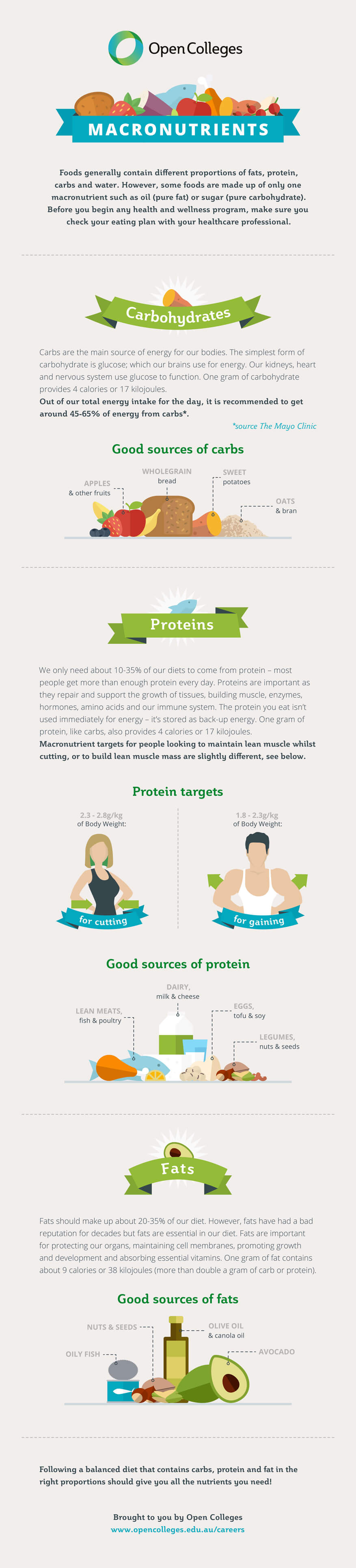 How-To-Eat-The-Right-Ratio-Of-Macronutrients-infographic-plaza