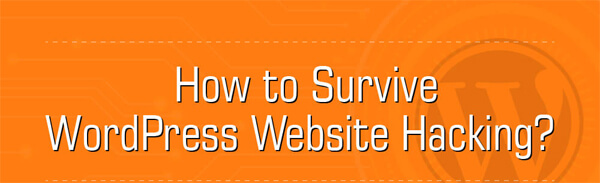 How-to-Survive-WordPress-Website-Hacking-infographic-plaza-thumb
