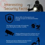 INTERESTING-SECURITY-FACTS-infographic-plaza