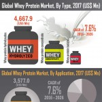 Infographics-Image_Global-Whey-Protein-Market-infographic-plaza