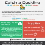 LTG-catch-a-duckling-infographic-plaza