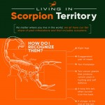 Living-in-Scorpion-Territory-infographic-plaza