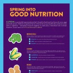 lutein-poster-infographic-plaza