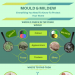 Mould-Mildew-infographic-plaza