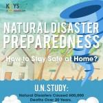 Natural Disaster Preparedness-infographic-plaza