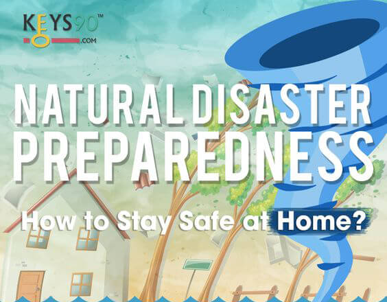 Natural Disaster Preparedness-infographic-plaza-thumb