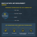 Net-development-and-net-development-team-infographic-plaza