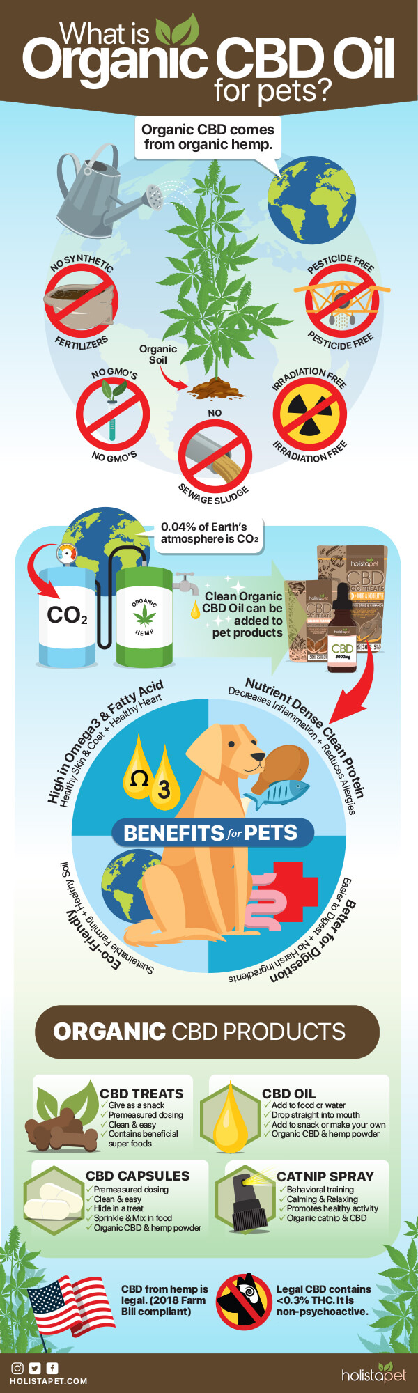 Organic-CBD-Oil-for-Dogs-infographic-plaza