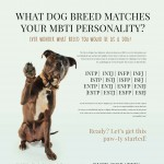 PetDoor-MBTI_Test-infographic-plaza