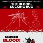 Pointe_The-Blood-Sucking-Bug-infographic-plaza
