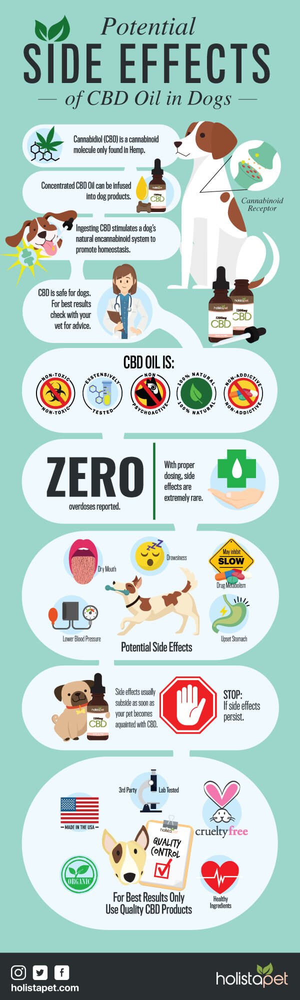 Potential-side-effects-of-CBD-oil-in-dogs-and-cats-infographic-plaza