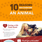 Reasons-to-adopt-an-animal-infographic-plaza