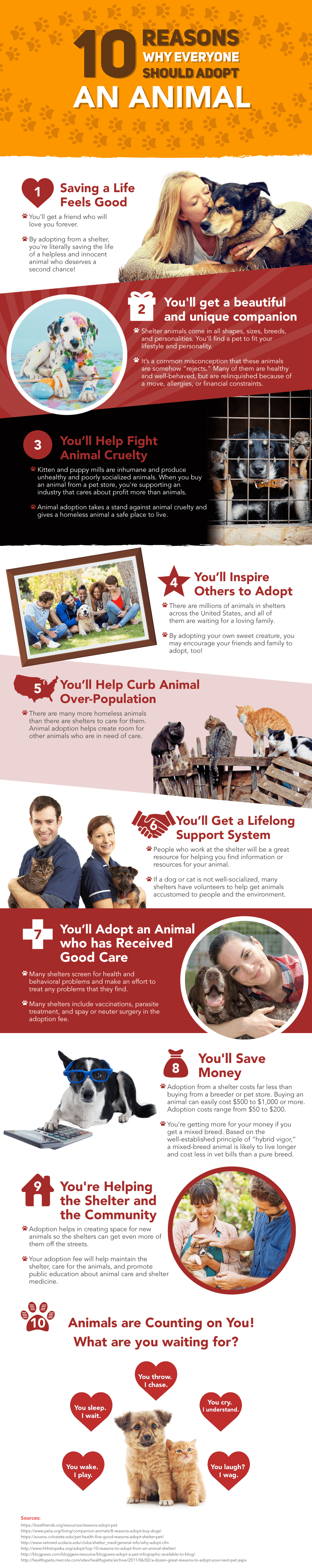 10 Reasons to Adopt a Pet