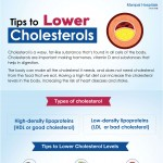 Reduce-Cholesterol-infographic-plaza