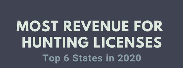 Revenue-per-State-2020-infographic-plaza-thumb
