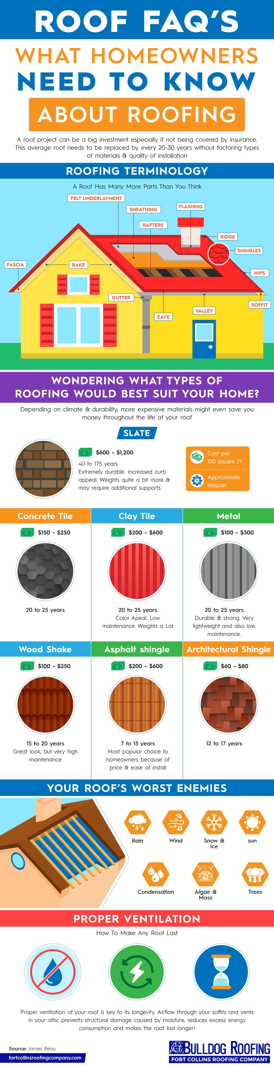 Roofing-infographic-what-homeowners-need-to-know-about-their-roof-infographic-plaza