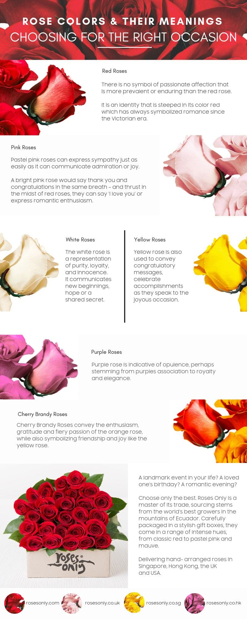 Roses_Only_Colors_and_Meanings_infographic-plaza