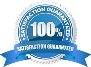 Infographic-Plaza-Satisfaction-Guaranteed
